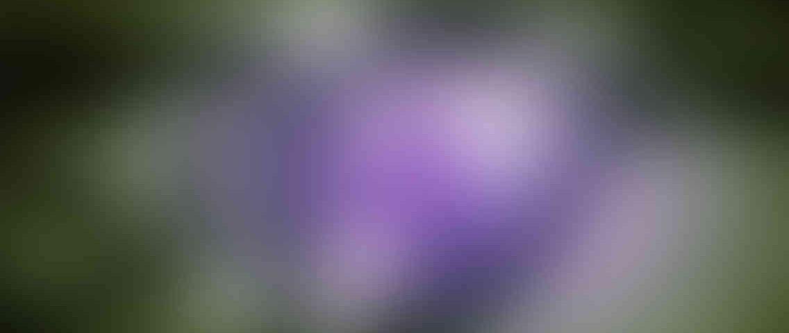 http://www.1535.syzefxis.gov.gr/wp-content/uploads/2013/03/standout_slide_3_v01-1136x480.jpg